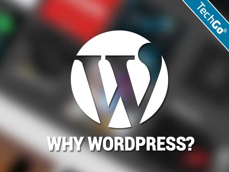 Reasons Why You Should Use WordPress for Your Website